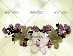Beautiful flowers bokeh background with place for text 1