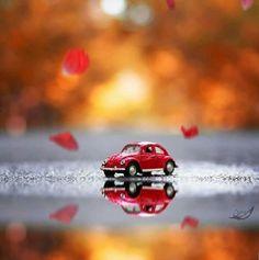 ~Katarina~cute stuff Miniature Photography, Cute Photography, Creative Photography, Pastel Wallpaper, Love Wallpaper, Wallpaper Backgrounds, Miniature Cars, Cute Little Things, Cute Cars