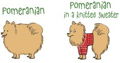 The pom sweater effect. The sweater is still whole, clearly this Pom isn't Cleo she would tear it up.