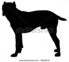 Silhouette of a dog of breed Cane Corso by Sergey Lavrentev, via ShutterStock