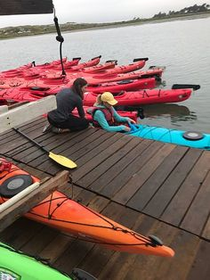 Kayak Connection (Moss Landing) - All You Need to Know Before You Go (with Photos) - TripAdvisor