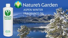 Aspen Winter Fragran