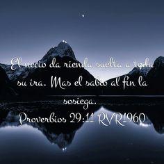 Proverbios 29:11