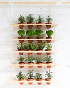 jardin-suspendu-balcon