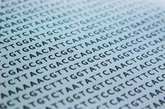 Scientists Take Steps Toward Gene-Editing Therapy In Adults | IFLScience