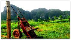 Tradición, cultura y naturaleza. Vinales, Lawn Mower, Outdoor Power Equipment, Natural Playgrounds, Culture, Naturaleza, Lawn Edger, Grass Cutter, Garden Tools
