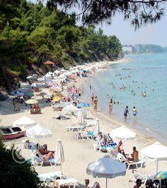 Kriopigi Beach, Kassandra, Halkidiki, Greece
