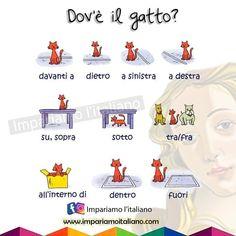 Italian Grammar, Italian Vocabulary, Italian Words, Italian Language, Learn Italian Online, Italian Lessons, Italian Life, Learning Italian, Teaching English