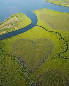 Image detail for -heart-shaped_nature__(2).jpg