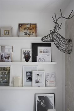 Framed pictures on shelf with wall-mounted stag's head made of metal wire
