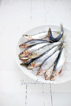 Food Photography Lighting, Food Photography Tips, Wine Shop Interior, Fish Anatomy, Seven Fishes, Cake International, Fish Artwork, Fruits Photos, Fish Dinner