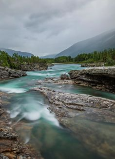 River wild - null