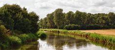 """""""at the riverside"""" von Bernd Hoyen #fotografie #photography #fotokunst #photoart #digitalart #wald #wälder #forest #forests #grün #green #gelb #yellow #fluss #flüsse #river #spiegelung #spiegelungen #reflection #reflections #wasserspiegelung #wasserspiegelungen #natur #nature #landschaft #landschaften #landscape #landscapes #deutschland #germany #schleswigholstein"""