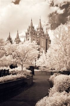 There is just something about the Salt Lake Temple that I love so much!  This is one of my favorite pictures of it!  Families can be together forever.  ♥