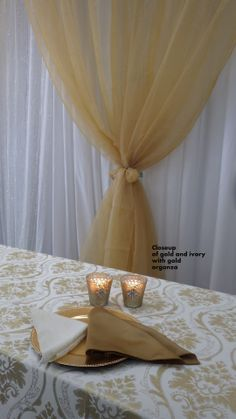 Closeup of Ivory and Gold Brocade with gold organza backdrop