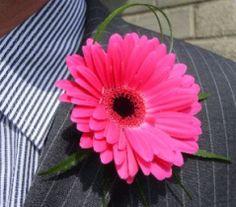 Pink Gerbera Buttonhole