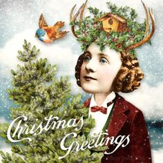 Christmas Greetings © Beth Todd 2015 - All Rights Reserved Created with Tumble Fish Studios 'Christmas Portraits' http://www.mischiefcircus.com/shop/product.php?productid=23426&cat=&page=