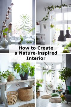 You don't need any outdoor space to enjoy the beauty and benefits of nature at home. Margo uses the shapes and colours of indoor plants to make her minimalist home come to life – plus the plants clean the air in the family's high-rise apartment, and give her son an opportunity to learn about nature. Here are some of her ideas for decorating your home with nature.