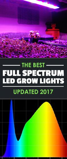What is a full spectrum LED grow light, and which of the many options are best? In this article we answer both questions for you, so give it a read.