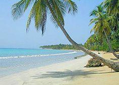 """Bienvenue à notre page """"Propriétés et immobilier à vendre à Samana en République Dominicaine, dans les Caraïbes"""": une plage de rêve aux Antilles"""