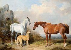 Vintage Antique Fine Art Horse Equestrian Print Digital Download Printable Image Instant Download For DIY Paper Crafts