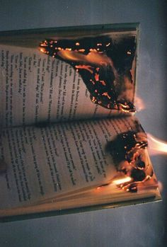 Everything fire related. Feel free to submit your fire pictures (pls, i love fire). I try to make my own fire pics once in a blue moon. Book Aesthetic, Aesthetic Photo, Aesthetic Pictures, Photography Aesthetic, Demon Aesthetic, Fire Photography, Cooking Photography, Beauty Photography, Wedding Photography