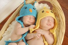 Ready to Ship  Baby Blue Bird Yellow Chick di sisterscraftcorner, $15.00