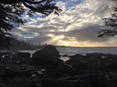 Right Now! Wild Pacific Trail is EPIC! #Ucluelet #ExploreBC