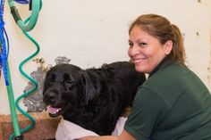 Whether it's a simple bath or a luxurious spa treatment, your pet will feel like royalty with us!