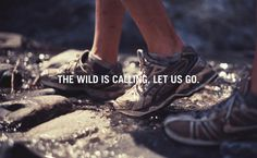 The wild is calling, let us go :)))