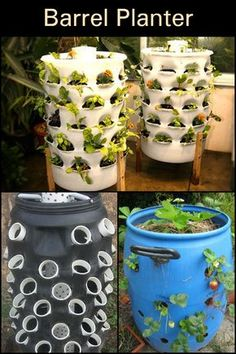 When recycling meets gardening. 3 Lively Simple Ideas: Vegetable Garden Diy Hacks vegetable garden layout how to build. 33 best hydroponic gardening for beginners design ideas 1 – Artofit Diy Planters, Garden Planters, Hydroponic Gardening, Container Gardening, Organic Gardening, Vegetable Gardening, Gardening Blogs, Flower Gardening, Barrel Planter