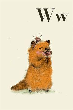 W fo woodchuck Alphabet animal,  Print 8x11 inches