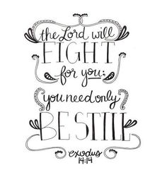 """13 Moses answered the people, """"Do not be afraid. Stand firm and you will see the deliverance the LORD will bring you today. The Egyptians you see today you will never see again. 14 The LORD will fight for you; you need only to be still."""""""