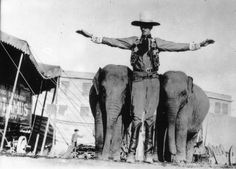 "Barnes Circus in the early Cowboy giant with elephants ""Sedro"" and ""Culver"" Giant People, Big People, Tall People, Nephilim Giants, Giant Skeleton, Genesis 6, Human Oddities, Circus Performers"