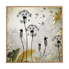 Found it at Wayfair - Little Dandelion by Iveta Abolina Framed Wall Art
