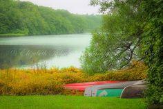 A Serene Moment on CAPE COD, Sandwich, Massachusetts Print, New England Travel Art, Country, Landscape, Nature, Pond