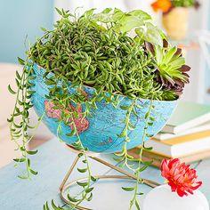 Use an old globe to make a stylish planter! - #diy