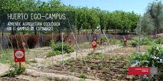 Estudiantes de Ciencia y Tecnología de los Alimentos aprenden de los huertos ecológicos