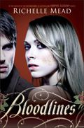 Bloodlines - Vampire Academy Spinoff. This is on my to read list! I want to retread the V Academy series first since its been a while
