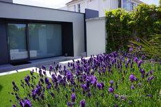 Agata Byrne, award winning garden designer, landscape architect, coastal residential garden, Sandycove, Ireland, July 2014