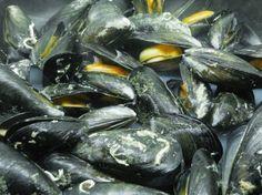 Mexilhão ao natural http://grafe-e-faca.com/pt/receitas/do-mar/marisco/mexilhao-ao-natural/