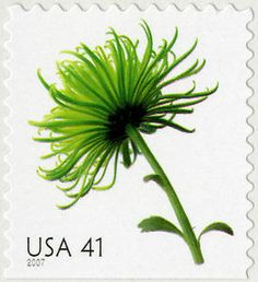 41c Chrysanthemum USA postage stamp