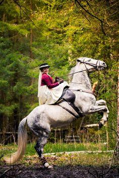 1000+ images about Side saddle on Pinterest | Side saddle ...