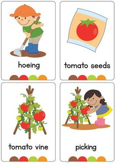 Brand new set of gardening/in the garden flash cards! All brightly coloured and of high quality. There are 24 brightly coloured, high quality printable flash cards in this pack. Please contact me if you would like these cards in another font. Toddler Learning Activities, Preschool Education, Play Based Learning, Baby Learning, Preschool Lessons, Preschool Garden, Preschool Crafts, Garden Kids, Kids Crafts