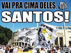 Imagem de http://sp1.fotolog.com/photo/49/31/21/santosfc/1280276843862_f.jpg.