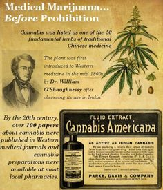 Medical Marijuana before prohibition