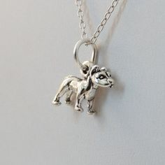 FashionJunkie4Life - Tiny Pit Bull Charm Necklace in Sterling Silver. Use coupon code PIN10 for 10% off your entire purchase and free shipping worldwide!