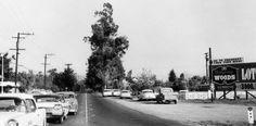 17th St, Tustin, 1959 | Flickr - Photo Sharing!