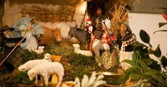 Le temps de Noël en Provence-Alpes-Côte d'Azur s'égraine de fêtes et de traditions. La Sainte Barbe et le blé de l'espérance, la Sainte Luce et ses lampions, la crèche et ses santons...