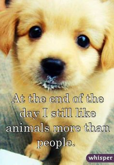 """At the end of the day I still like animals more than people. "" how true are these words"